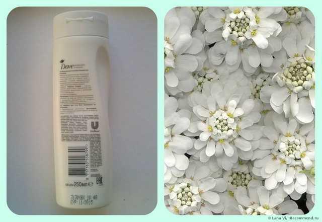 Молочко для тела Dove Увлажнение и Питание - фото